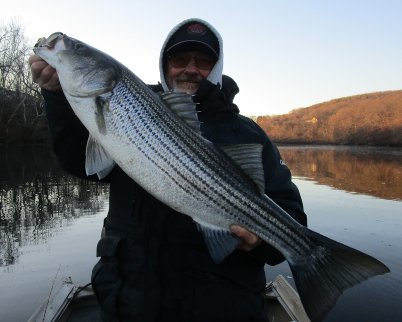 Better than expected richz 39 s bass blog for Is tomorrow a good fishing day