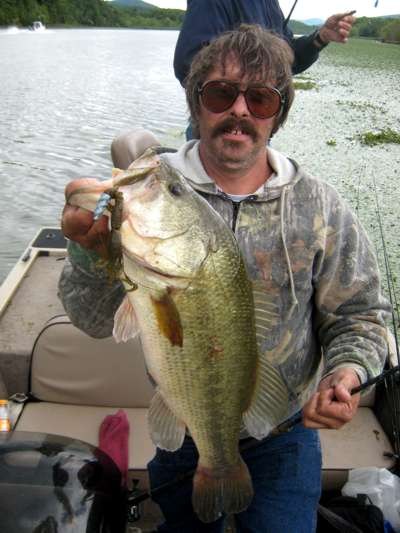 Gorillas in the nut for Bed fishing for bass